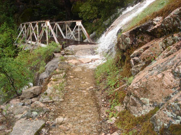 A new waterfall overtakes the trail back to the car
