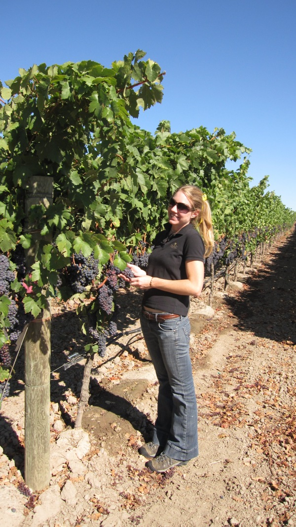 Katie checks the Pinot clusters
